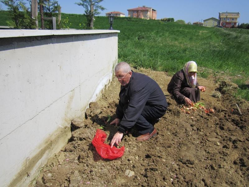 Bahçe Aktivitelerimiz